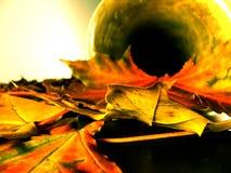 Outono still-life4 Imagens de Stock