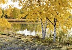 outono três e praia do mar Foto de Stock Royalty Free