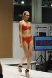 outono vermelho de Lingrie Desire Lingrie Expo Fashion Show Imagens de Stock Royalty Free