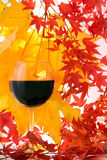 Outono. Vinho vermelho Fotos de Stock