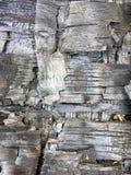 Output of the burn. Wood damage stock images