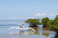 Outrigger Boat Anchored in Shallows of Mangroves stock photo