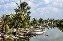 Outrigger boats in the harbour in Negombo, Sri Lan Stock Photos