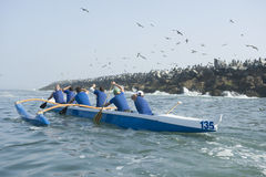 Outrigger Canoe Race Stock Images