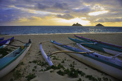 Outrigger canoes on the beach. In hawaii at sunrise royalty free stock photography