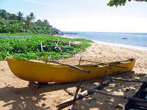 Outrigger canoes on the beach of a tropical island. The beach is flooded with sunlight. The boats are placed on the sand and vegetation. The boat in the Royalty Free Stock Images