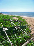 Outrigger canoes on the beach of a tropical island. The beach is flooded with sunlight. The green boats are placed on the sand and vegetation Stock Photography