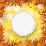 Outside Autumn Foliage Fall Emblem Centre Stock Photography