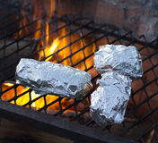 Outside barbecue cooking Stock Photography