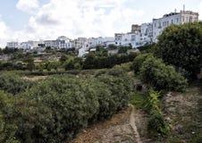 Outside białe ściany miasto Ostuni, Apulia, Włochy Obrazy Royalty Free