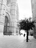 Outside the cathedral La Seu Royalty Free Stock Photography
