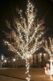 Outside christmas lights Royalty Free Stock Photos