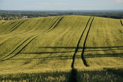 Outside the city - rural landscape - a field Stock Image