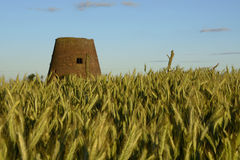 Outside the city - rural landscape - an old windmill on the fiel Royalty Free Stock Photography