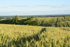 Outside the city - rural landscape - an old windmill on the fiel Stock Photography