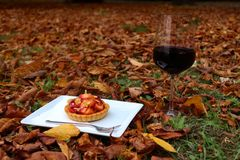 Outside fall picnic with red wine royalty free stock images