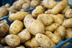 Outside Potatoes Royalty Free Stock Photography