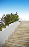Outside stairway and flowers Stock Image