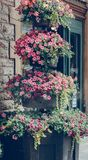 Outside train station,. Flowers decorations outside train station,Bristol, Somerset, England Royalty Free Stock Photos
