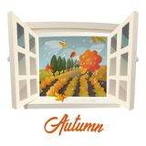 Farm or garden during rain at autumn season. Outside view through window at autumn field with flying leaves and rain or storm. Trees and crop or bush on farm Stock Photography