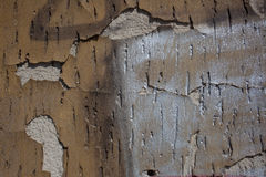 Outside wall, plaster grunge background texture Royalty Free Stock Photography