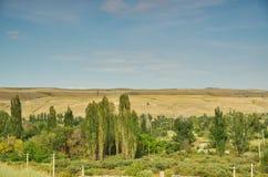Outskirts of Bishkek. Kyrgyzstan landscape royalty free stock image