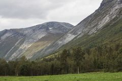 Steinveggen Royalty Free Stock Image
