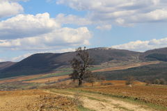 Outskirts of Stara Planina Royalty Free Stock Image