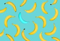 Outstanding blue banana among yellow banana on pastel blue background. stock image