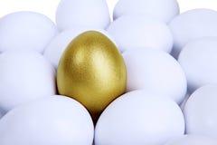 Outstanding golden egg. In midst of common eggs stock image