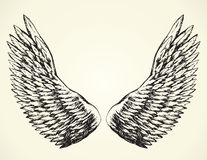Outstretched wings. Vector drawing Stock Photography