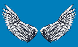 Outstretched wings. Vector drawing Stock Photo