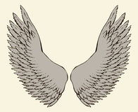 Outstretched wings. Vector drawing Royalty Free Stock Photo