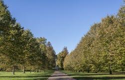 outubro brilhante e ensolarado em Londres - uma ideia de um caminho em Hyde Park com um céu azul como um fundo fotos de stock royalty free