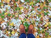 Outumn под ботинками Стоковая Фотография RF