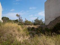 Outvecklat land i den gamla staden av arta, mallorca Royaltyfria Foton