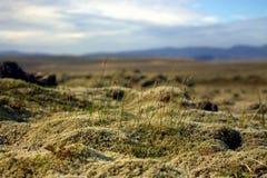 Outwash duidelijk landschap in IJsland Stock Afbeelding