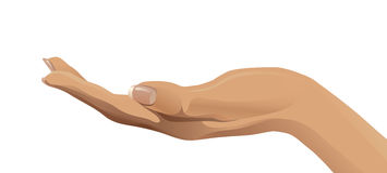 On ouvrent la main humaine illustration stock