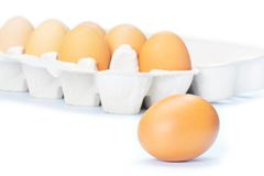 Ouvrez l'eggbox Photos stock