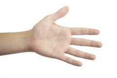 Ouvrez la main Photo libre de droits