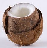 Ouvrez la noix de coco en détail Image stock