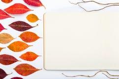 Ouvrez le bloc-notes avec des feuilles d'automne sur un fond blanc Photographie stock