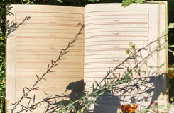Ouvrez le carnet sur l'herbe verte Photographie stock