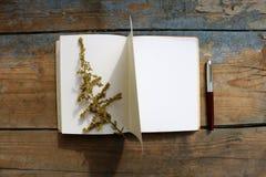 Ouvrez le carnet vide sur une table en bois Images stock