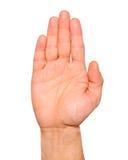 Ouvrez le geste de main de paume de la main masculine d'isolement Image stock