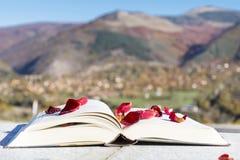 Ouvrez le livre avec des pétales de rose sur un fond de montagne Images stock