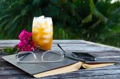 Ouvrez le livre avec du thé de glace à l'extérieur photographie stock libre de droits