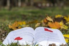 Ouvrez le livre dans un jardin d'automne avec les coeurs rouges Image libre de droits
