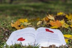 Ouvrez le livre dans un jardin d'automne avec les coeurs rouges Photos stock