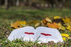Ouvrez le livre dans un jardin d'automne avec les coeurs rouges Image stock